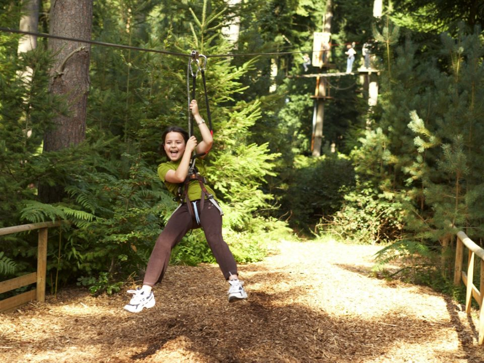 Go Ape Peak District