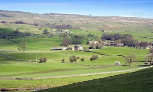 two dales